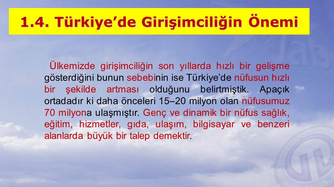 1.4. Türkiye'de Girişimciliğin Önemi