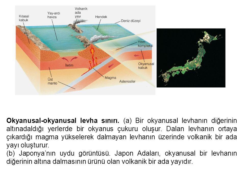 Okyanusal-okyanusal levha sınırı
