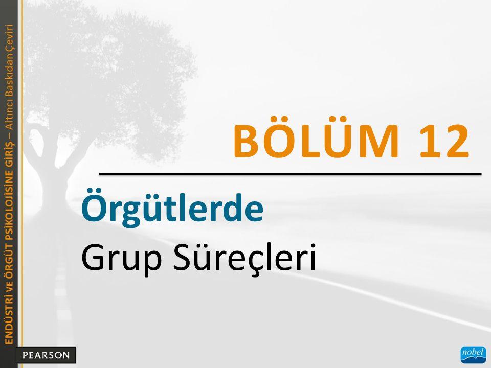 BÖLÜM 12 Örgütlerde Grup Süreçleri