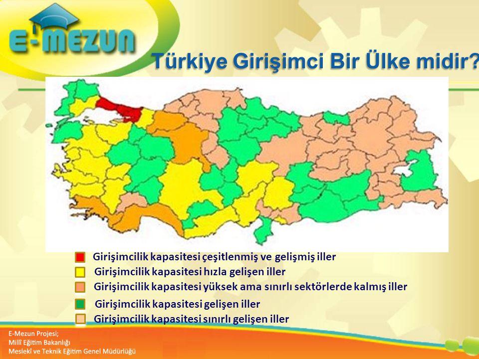 Türkiye Girişimci Bir Ülke midir