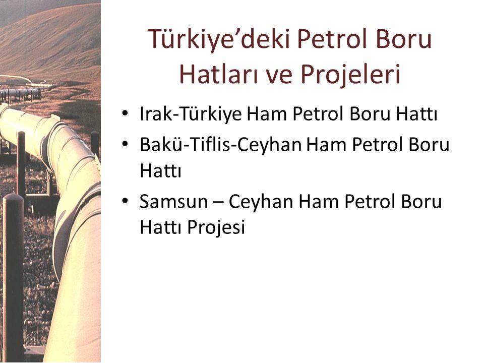 Türkiye'deki Petrol Boru Hatları ve Projeleri