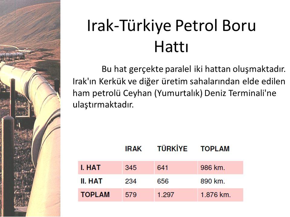 Irak-Türkiye Petrol Boru Hattı