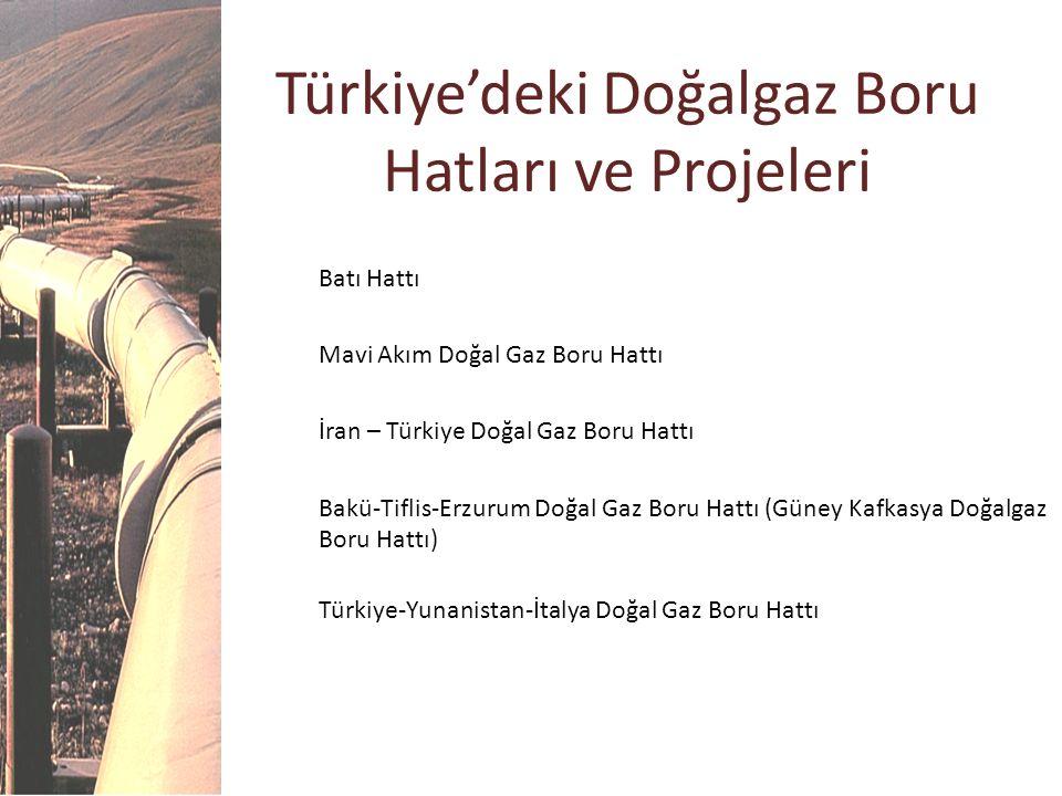 Türkiye'deki Doğalgaz Boru Hatları ve Projeleri