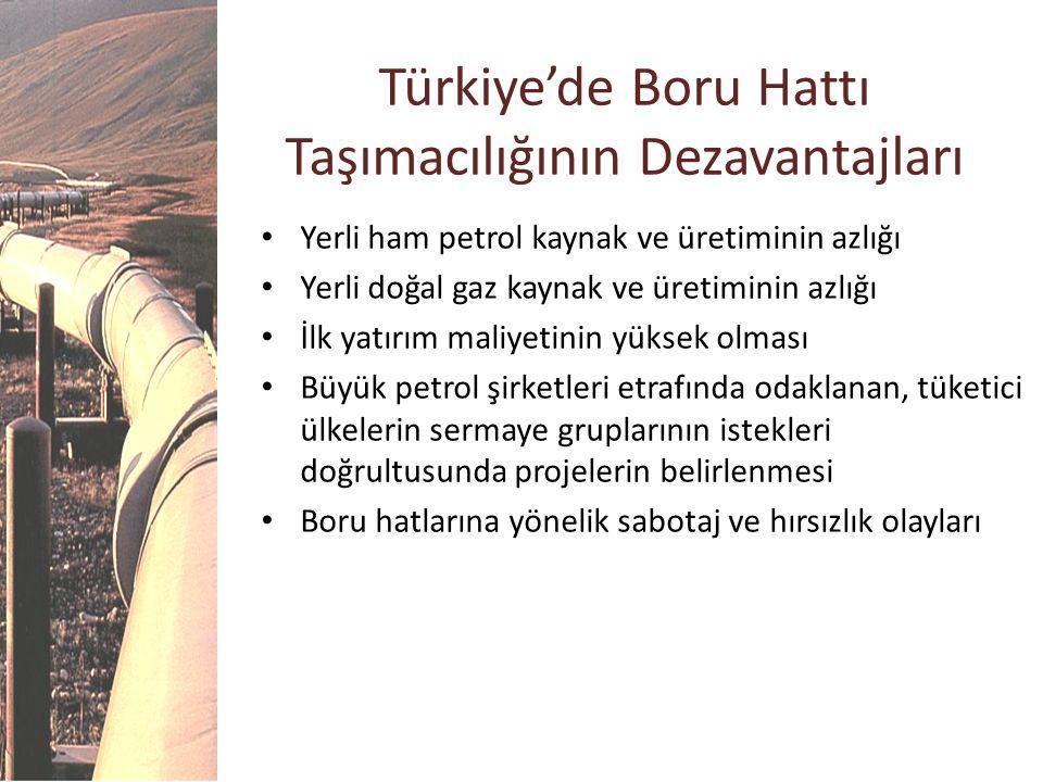 Türkiye'de Boru Hattı Taşımacılığının Dezavantajları