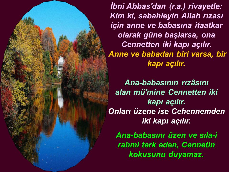 İbni Abbas dan (r.a.) rivayetle: