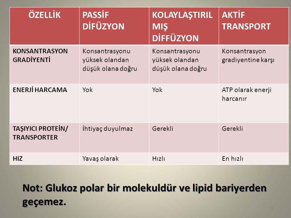 Not: Glukoz polar bir molekuldür ve lipid bariyerden geçemez.