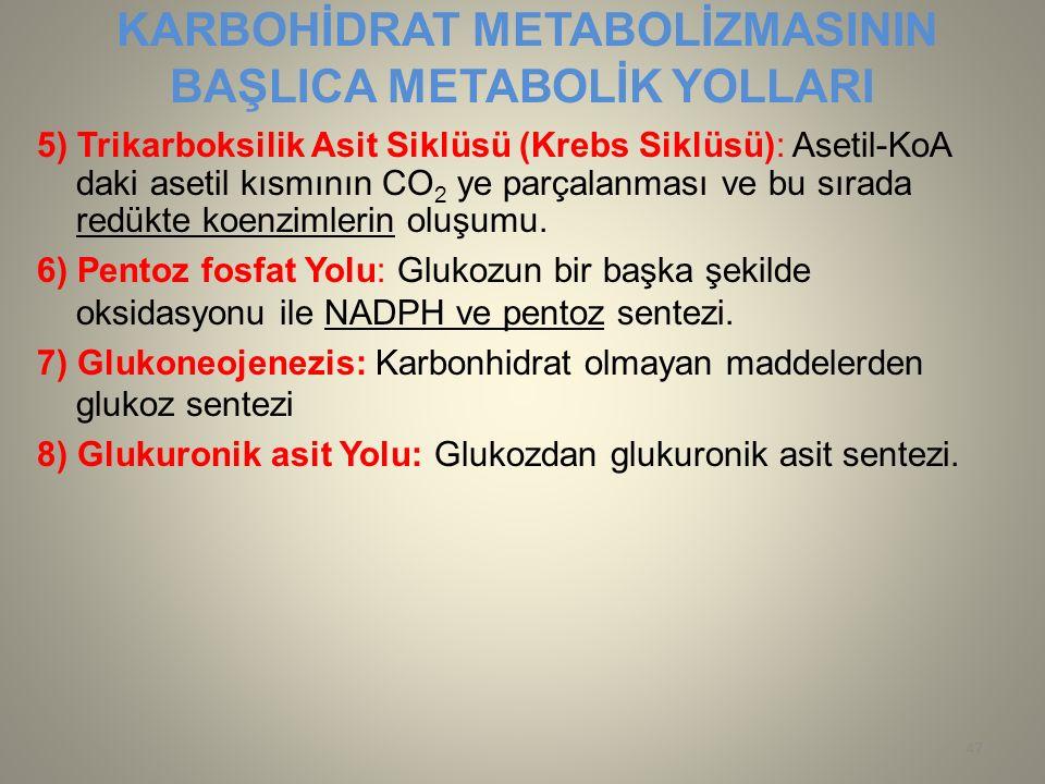 KARBOHİDRAT METABOLİZMASININ BAŞLICA METABOLİK YOLLARI