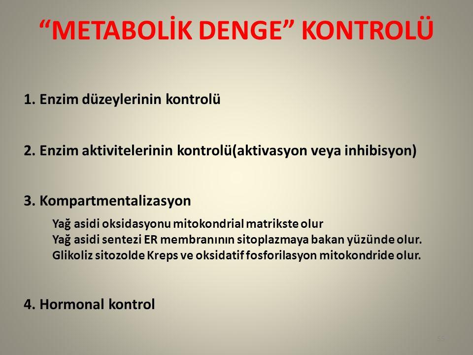 METABOLİK DENGE KONTROLÜ