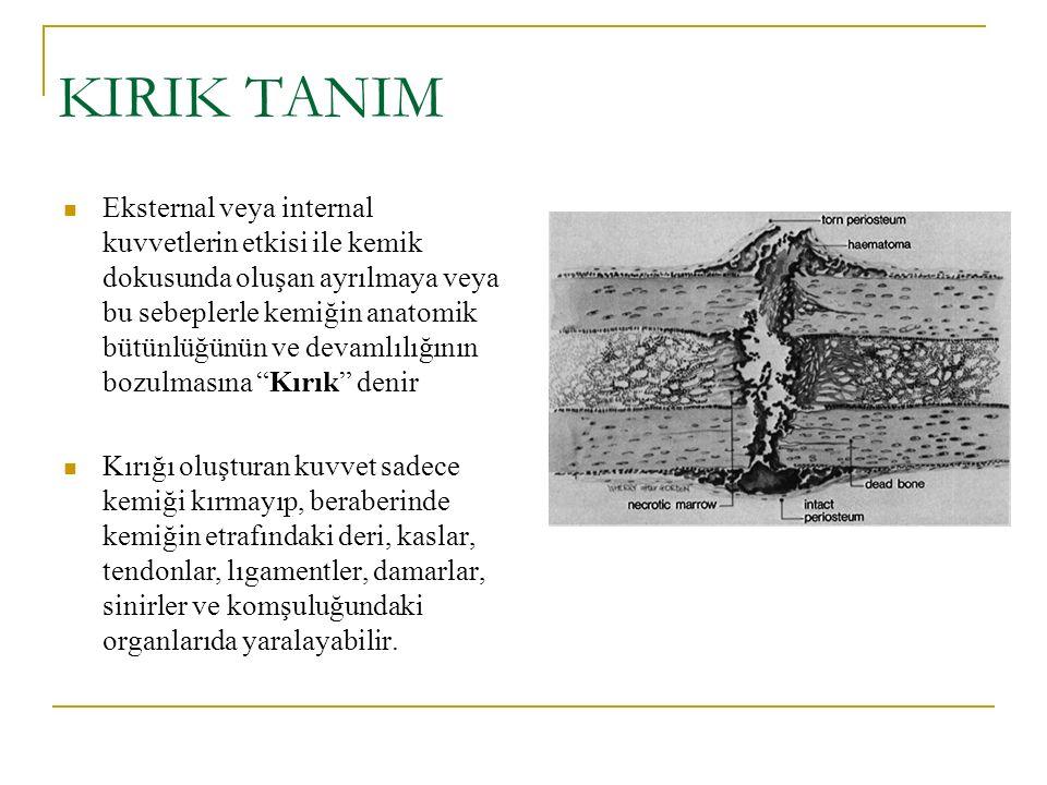 KIRIK TANIM