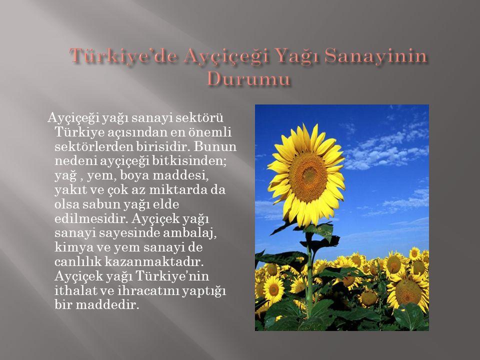 Türkiye'de Ayçiçeği Yağı Sanayinin Durumu