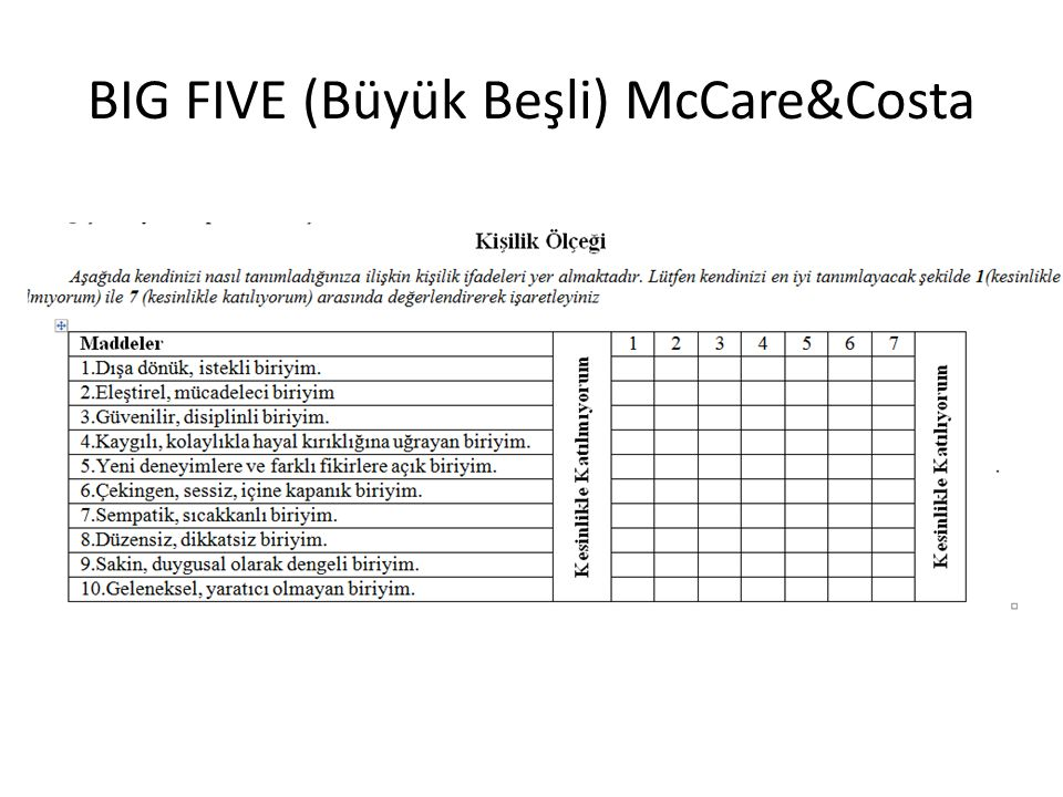 BIG FIVE (Büyük Beşli) McCare&Costa