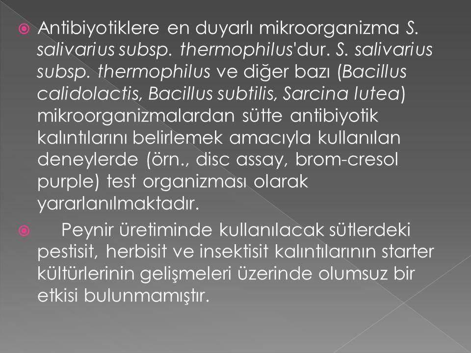 Antibiyotiklere en duyarlı mikroorganizma S. salivarius subsp