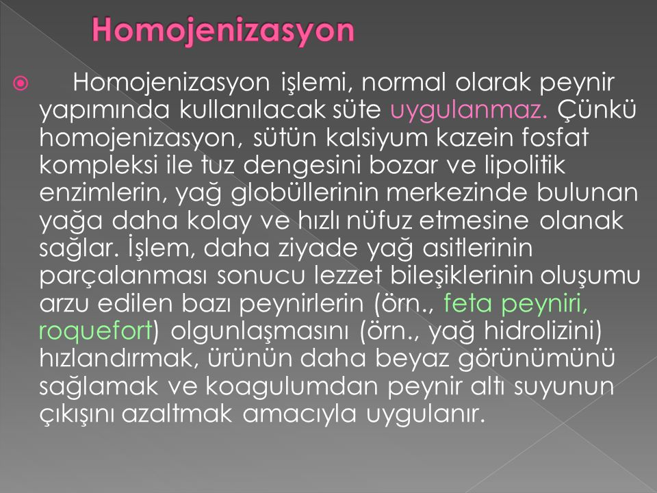 Homojenizasyon