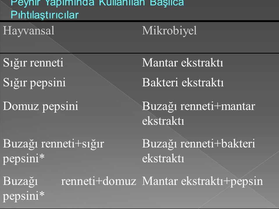 Buzağı renneti+mantar ekstraktı