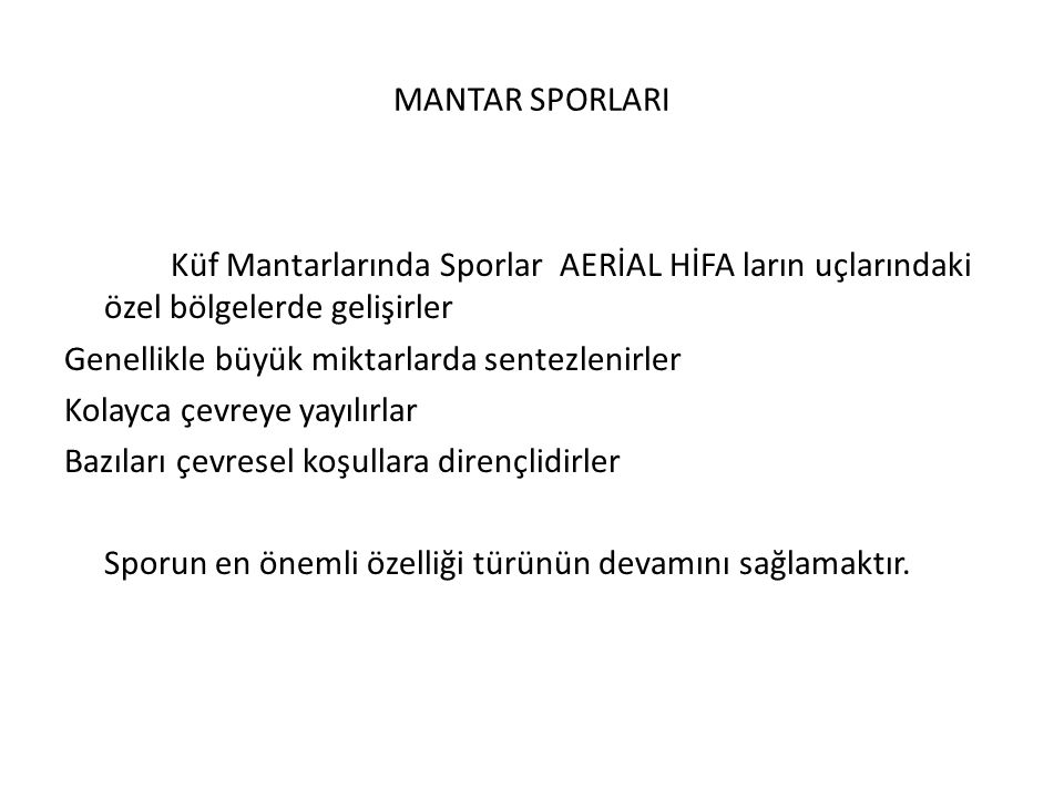 MANTAR SPORLARI