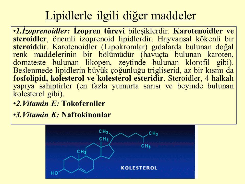 Lipidlerle ilgili diğer maddeler