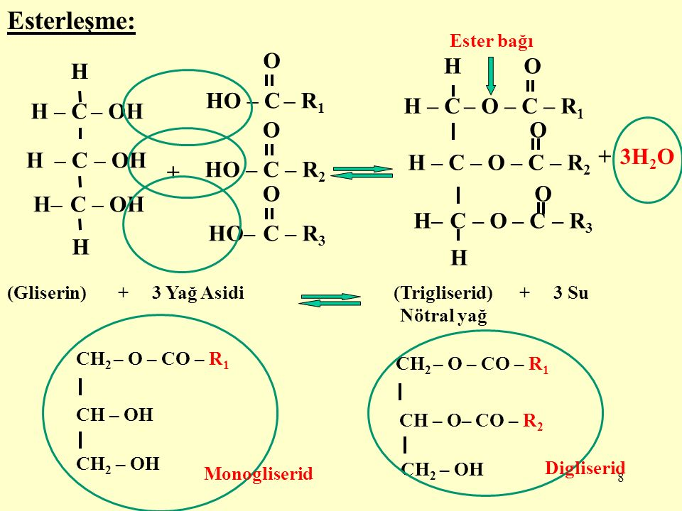 Esterleşme: HO – C – R1 O HO – C – R2 HO– C – R3 H – C – O – C – R1 H