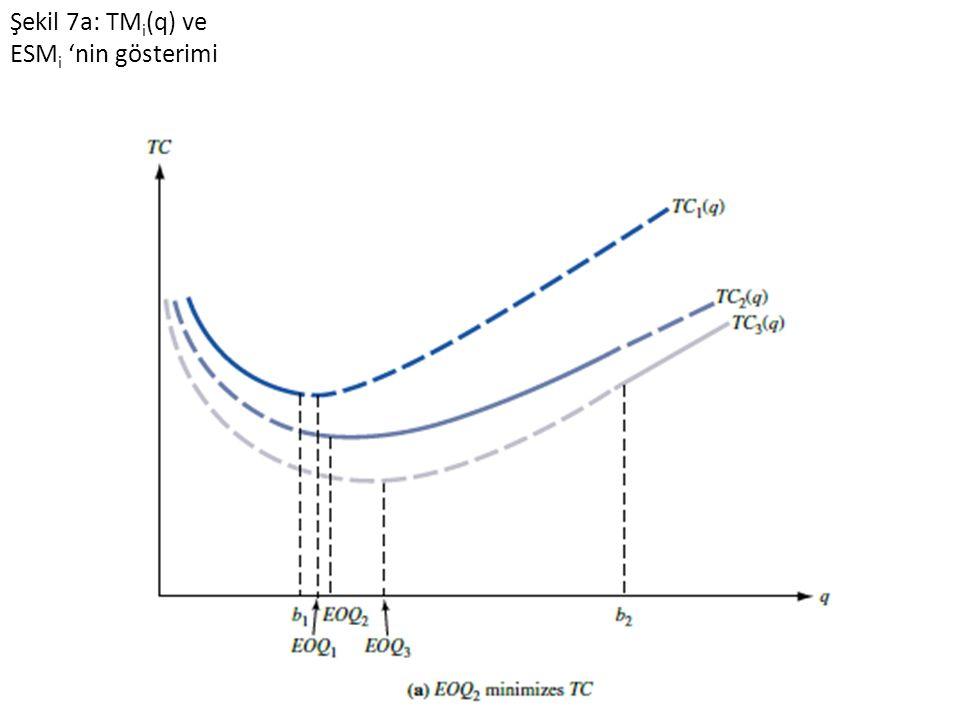Şekil 7a: TMi(q) ve ESMi 'nin gösterimi