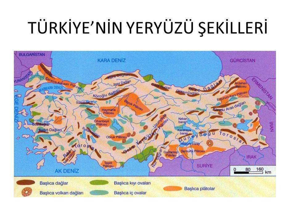 TÜRKİYE'NİN YERYÜZÜ ŞEKİLLERİ