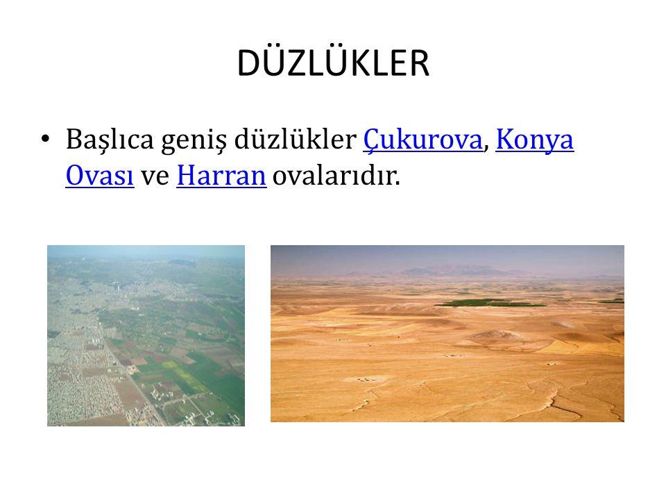 DÜZLÜKLER Başlıca geniş düzlükler Çukurova, Konya Ovası ve Harran ovalarıdır.
