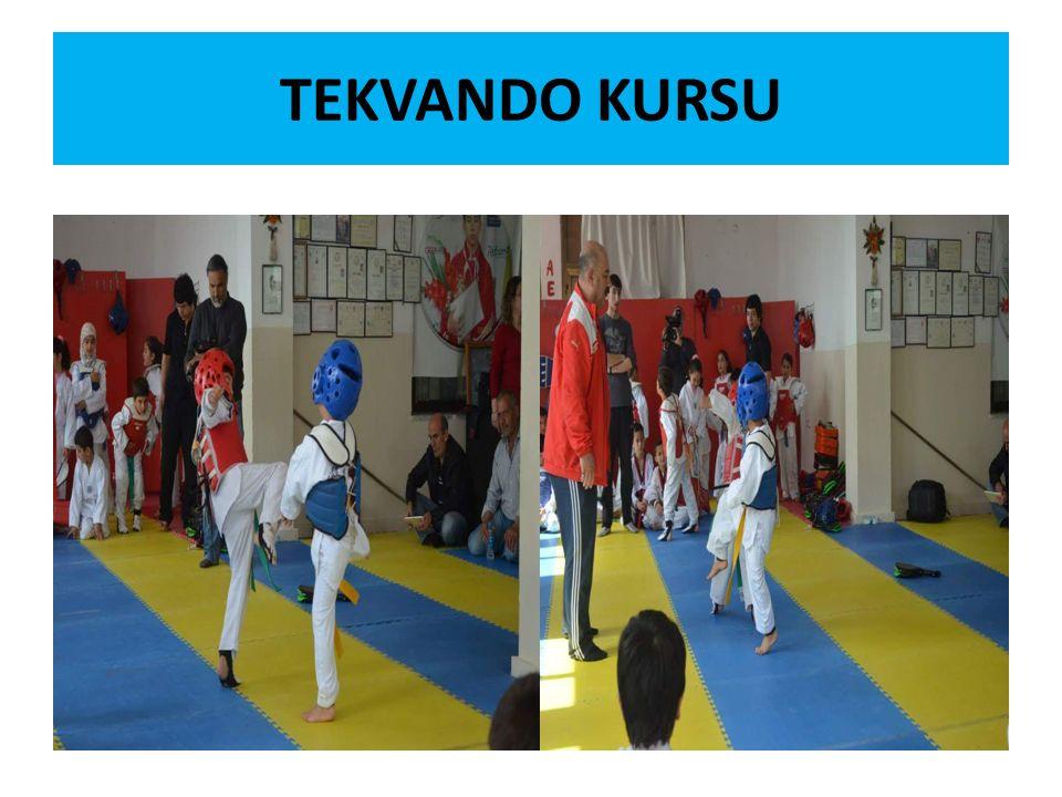TEKVANDO KURSU