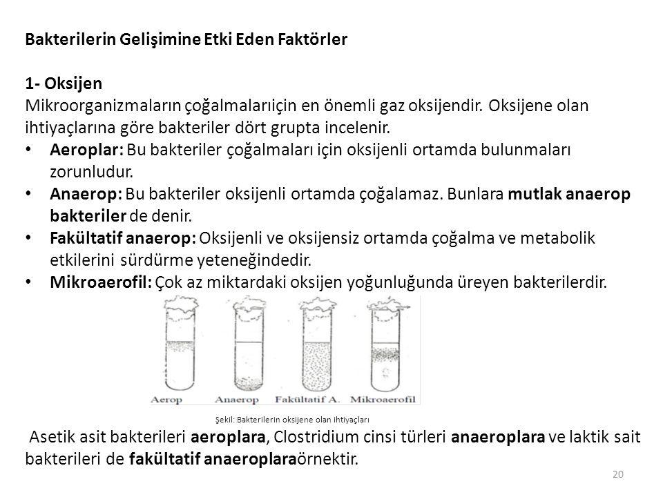 Bakterilerin Gelişimine Etki Eden Faktörler 1- Oksijen