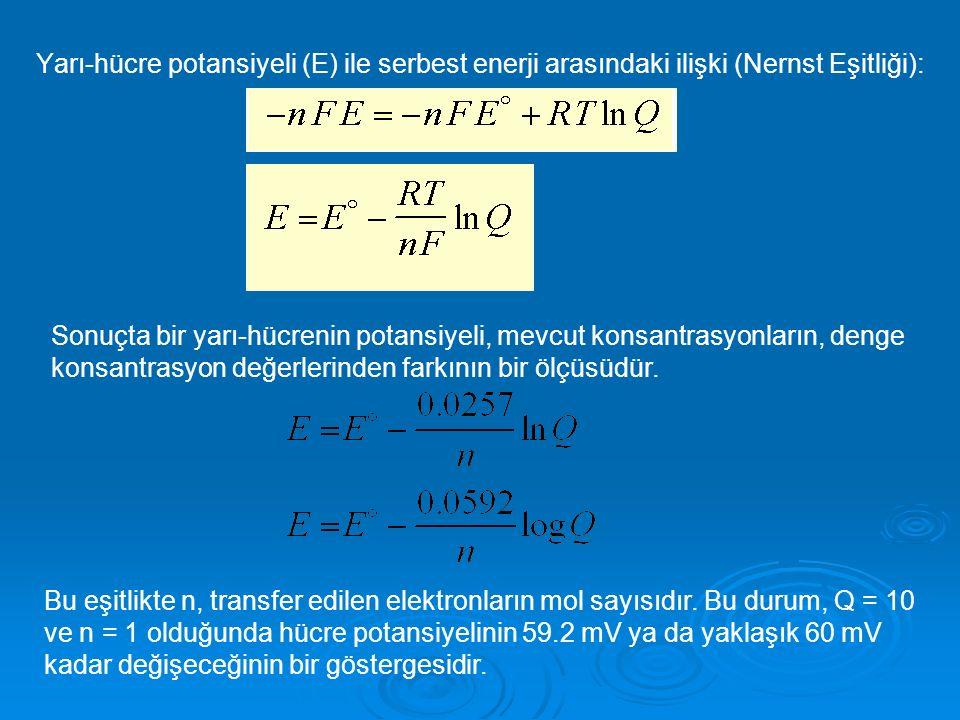 Yarı-hücre potansiyeli (E) ile serbest enerji arasındaki ilişki (Nernst Eşitliği):