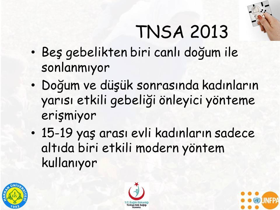 TNSA 2013 Beş gebelikten biri canlı doğum ile sonlanmıyor
