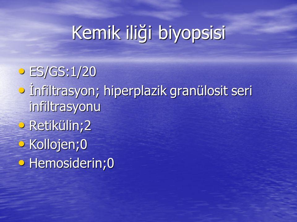 Kemik iliği biyopsisi ES/GS:1/20