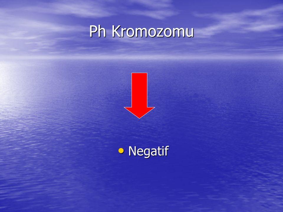 Ph Kromozomu Negatif