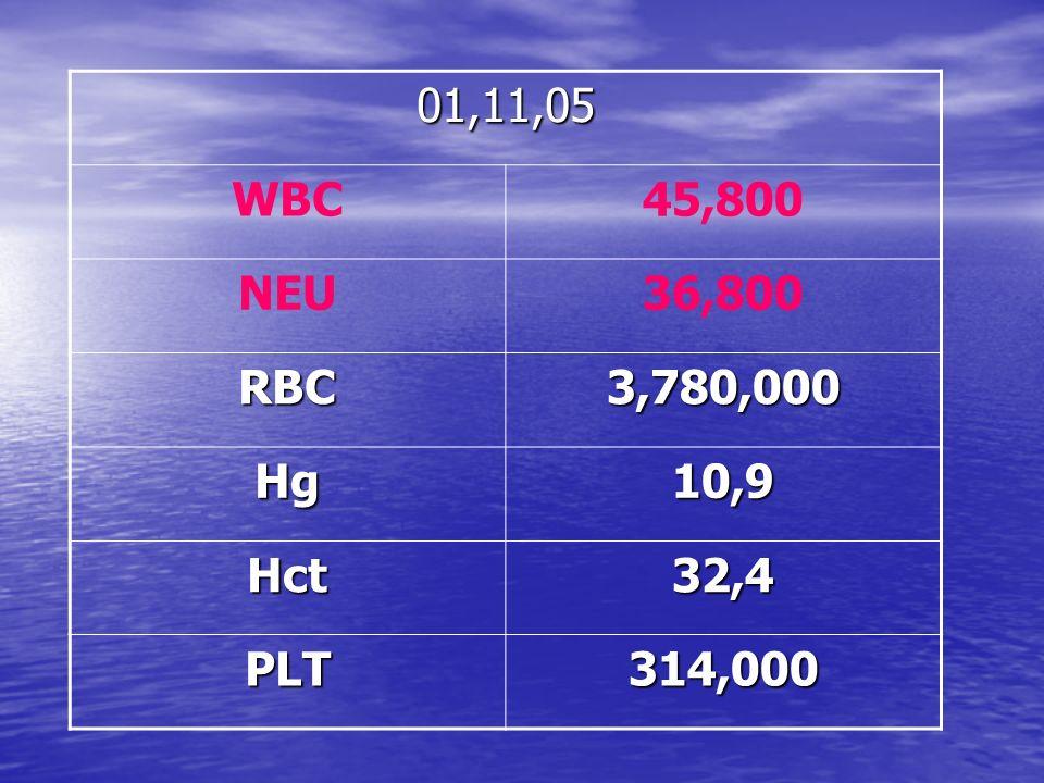 01,11,05 WBC 45,800 NEU 36,800 RBC 3,780,000 Hg 10,9 Hct 32,4 PLT 314,000