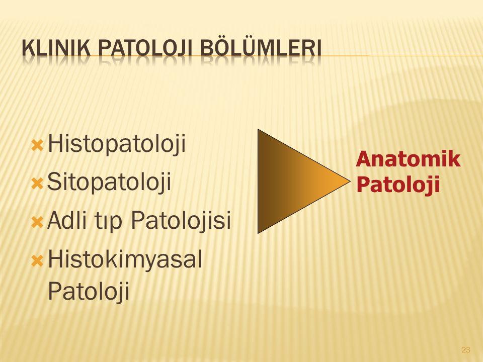 Klinik Patoloji Bölümleri