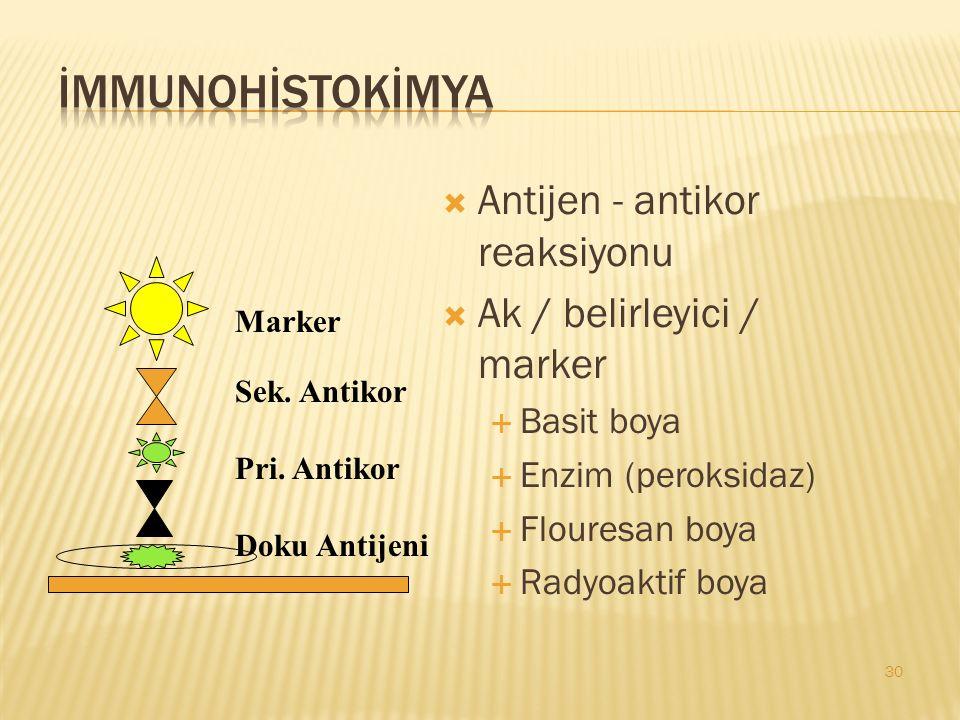 İMMUNOHİSTOKİMYA Antijen - antikor reaksiyonu