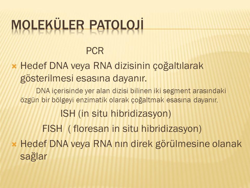 MOLEKÜLER PATOLOJİ PCR
