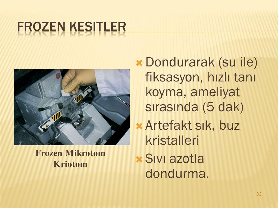 Artefakt sık, buz kristalleri Sıvı azotla dondurma.
