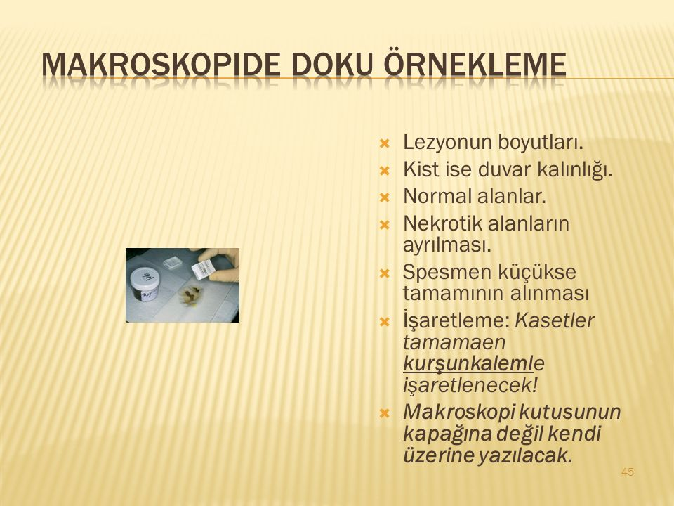 Makroskopide doku örnekleme