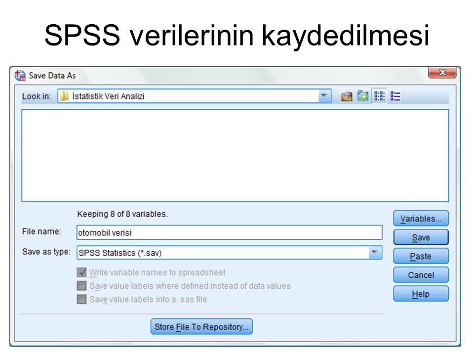 SPSS verilerinin kaydedilmesi