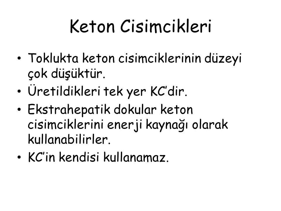 Keton Cisimcikleri Toklukta keton cisimciklerinin düzeyi çok düşüktür.