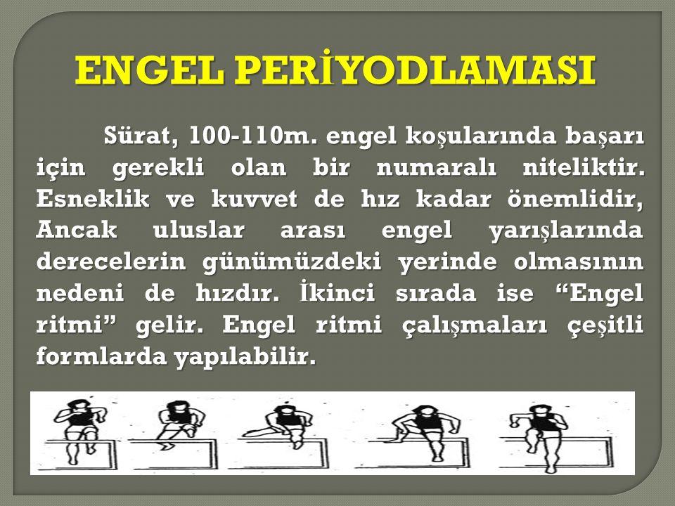 ENGEL PERİYODLAMASI