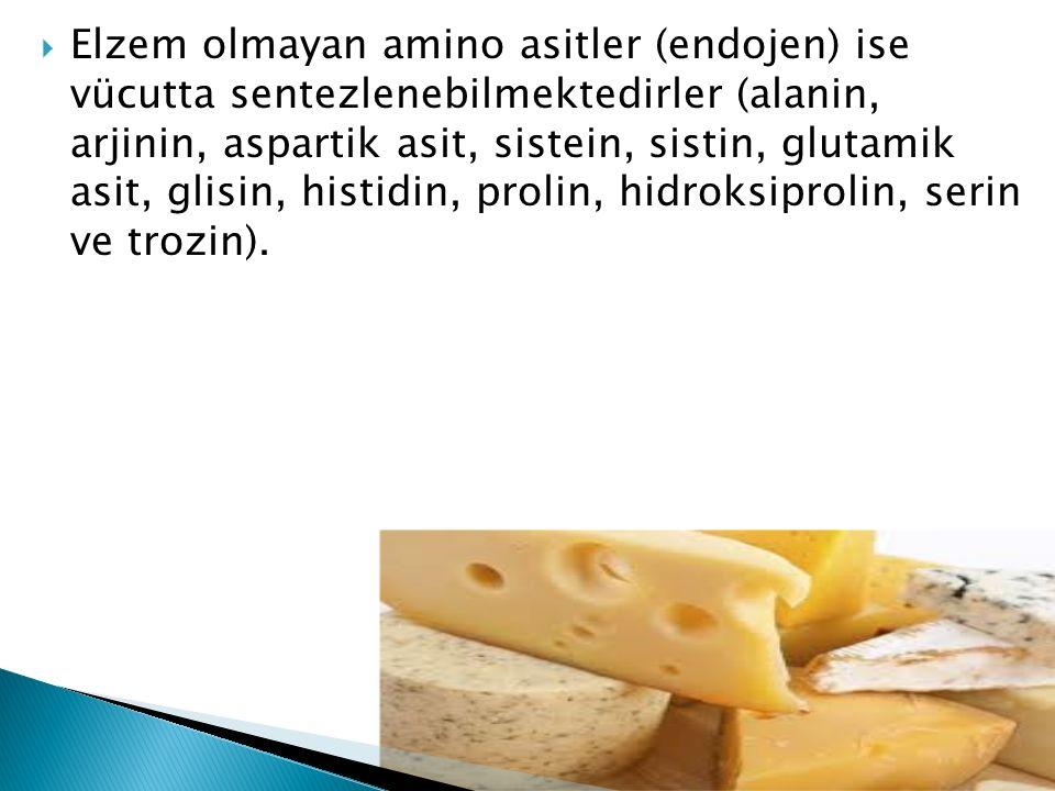 Elzem olmayan amino asitler (endojen) ise vücutta sentezlenebilmektedirler (alanin, arjinin, aspartik asit, sistein, sistin, glutamik asit, glisin, histidin, prolin, hidroksiprolin, serin ve trozin).