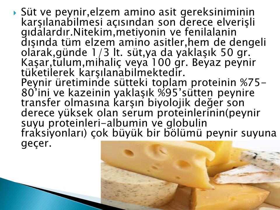 Süt ve peynir,elzem amino asit gereksiniminin karşılanabilmesi açısından son derece elverişli gıdalardır.Nitekim,metiyonin ve fenilalanin dışında tüm elzem amino asitler,hem de dengeli olarak,günde 1/3 lt.