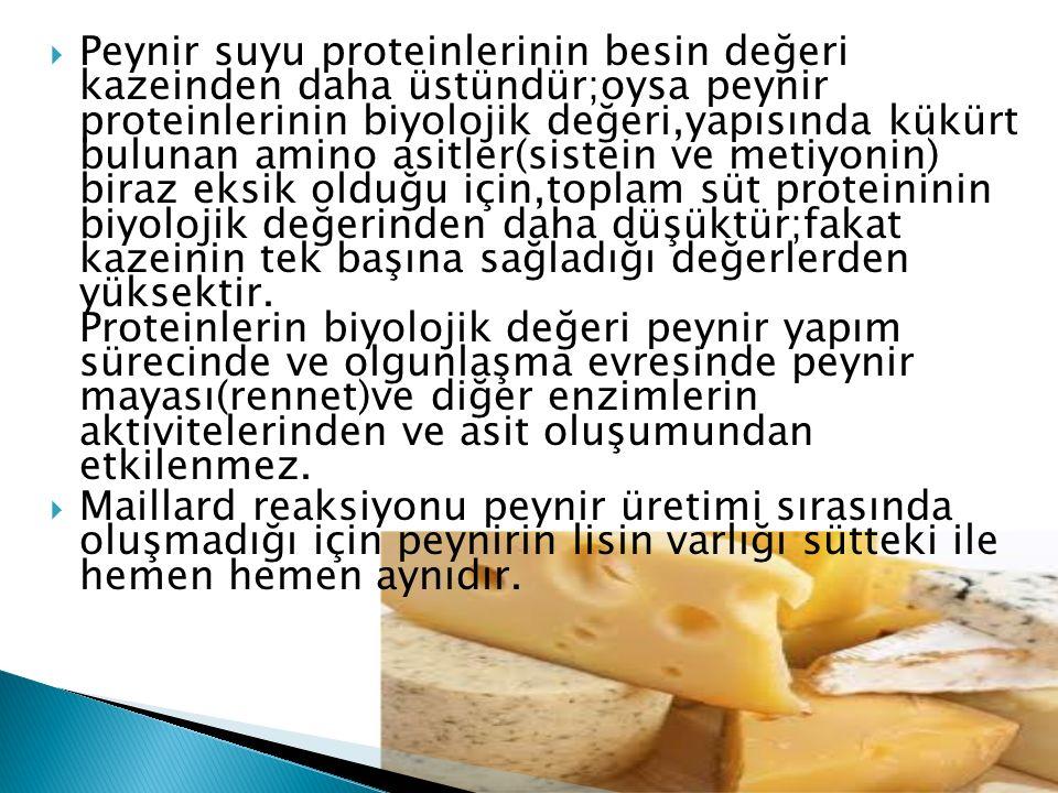 Peynir suyu proteinlerinin besin değeri kazeinden daha üstündür;oysa peynir proteinlerinin biyolojik değeri,yapısında kükürt bulunan amino asitler(sistein ve metiyonin) biraz eksik olduğu için,toplam süt proteininin biyolojik değerinden daha düşüktür;fakat kazeinin tek başına sağladığı değerlerden yüksektir. Proteinlerin biyolojik değeri peynir yapım sürecinde ve olgunlaşma evresinde peynir mayası(rennet)ve diğer enzimlerin aktivitelerinden ve asit oluşumundan etkilenmez.