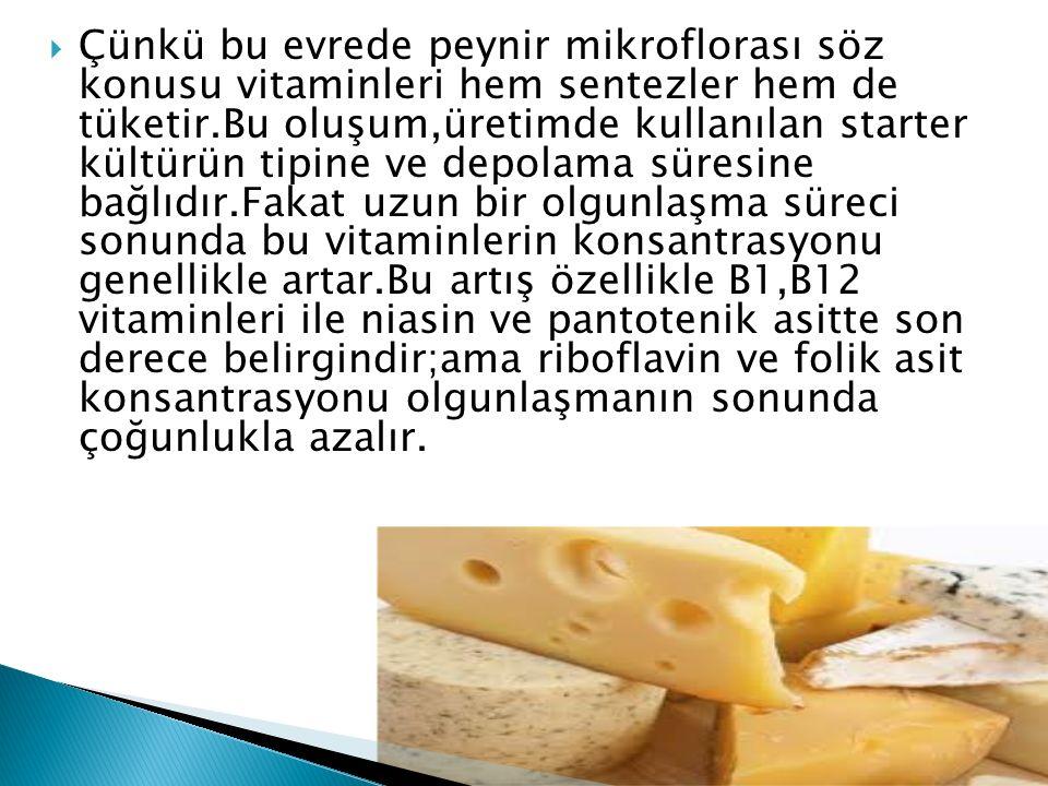 Çünkü bu evrede peynir mikroflorası söz konusu vitaminleri hem sentezler hem de tüketir.Bu oluşum,üretimde kullanılan starter kültürün tipine ve depolama süresine bağlıdır.Fakat uzun bir olgunlaşma süreci sonunda bu vitaminlerin konsantrasyonu genellikle artar.Bu artış özellikle B1,B12 vitaminleri ile niasin ve pantotenik asitte son derece belirgindir;ama riboflavin ve folik asit konsantrasyonu olgunlaşmanın sonunda çoğunlukla azalır.