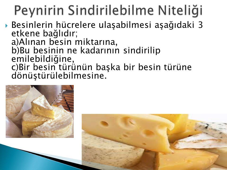 Peynirin Sindirilebilme Niteliği