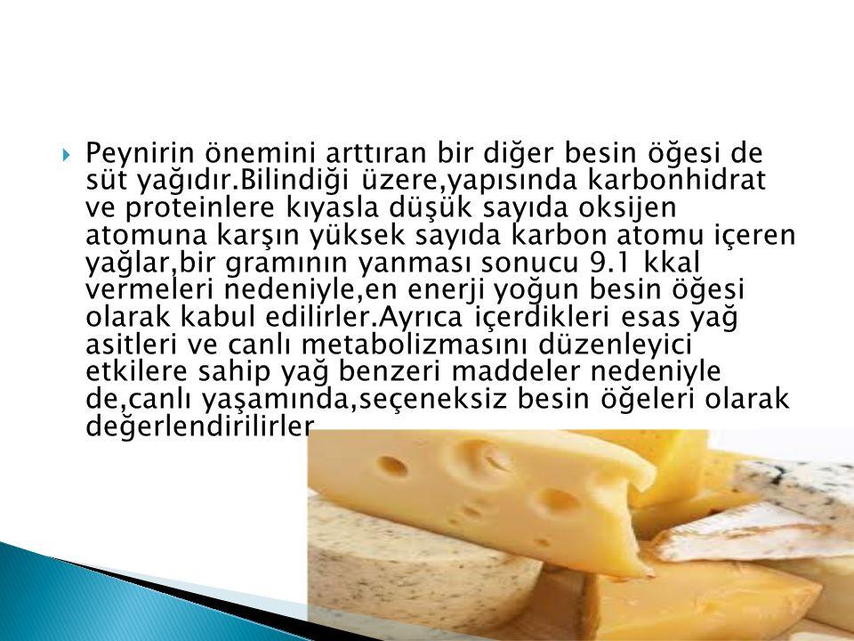 Peynirin önemini arttıran bir diğer besin öğesi de süt yağıdır