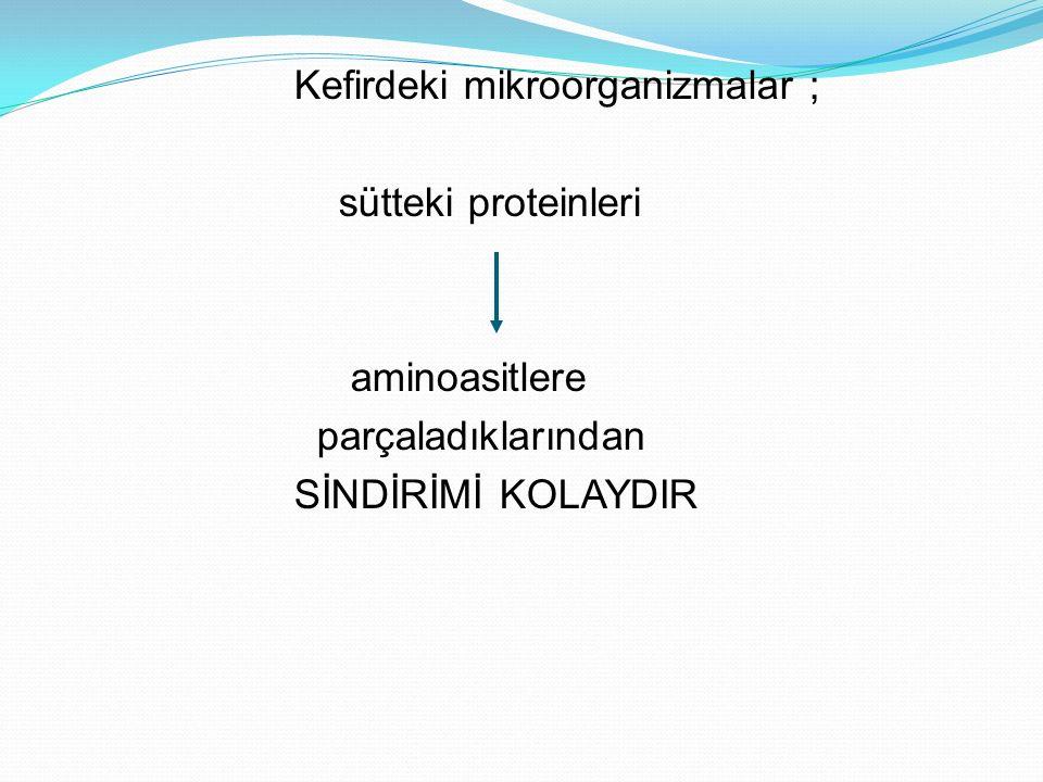 Kefirdeki mikroorganizmalar ;