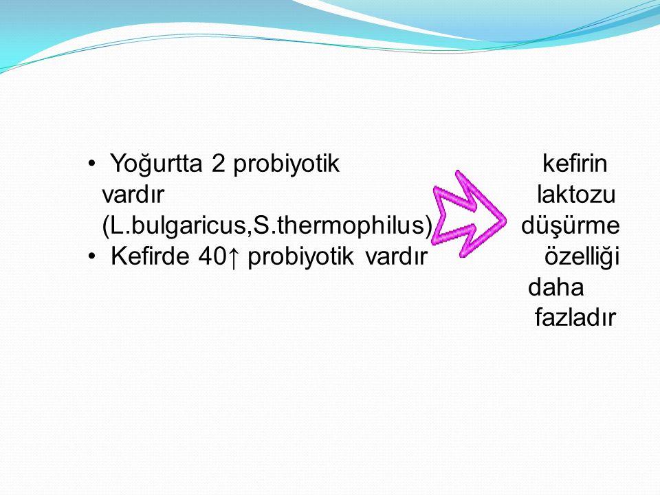 Yoğurtta 2 probiyotik kefirin
