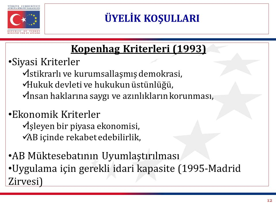 Kopenhag Kriterleri (1993)