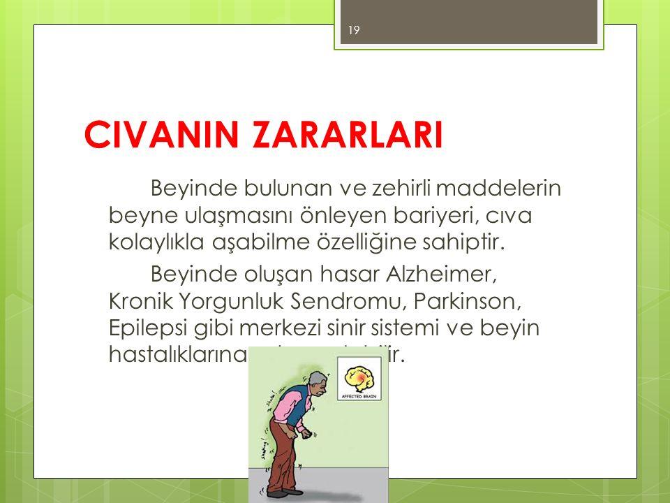 CIVANIN ZARARLARI