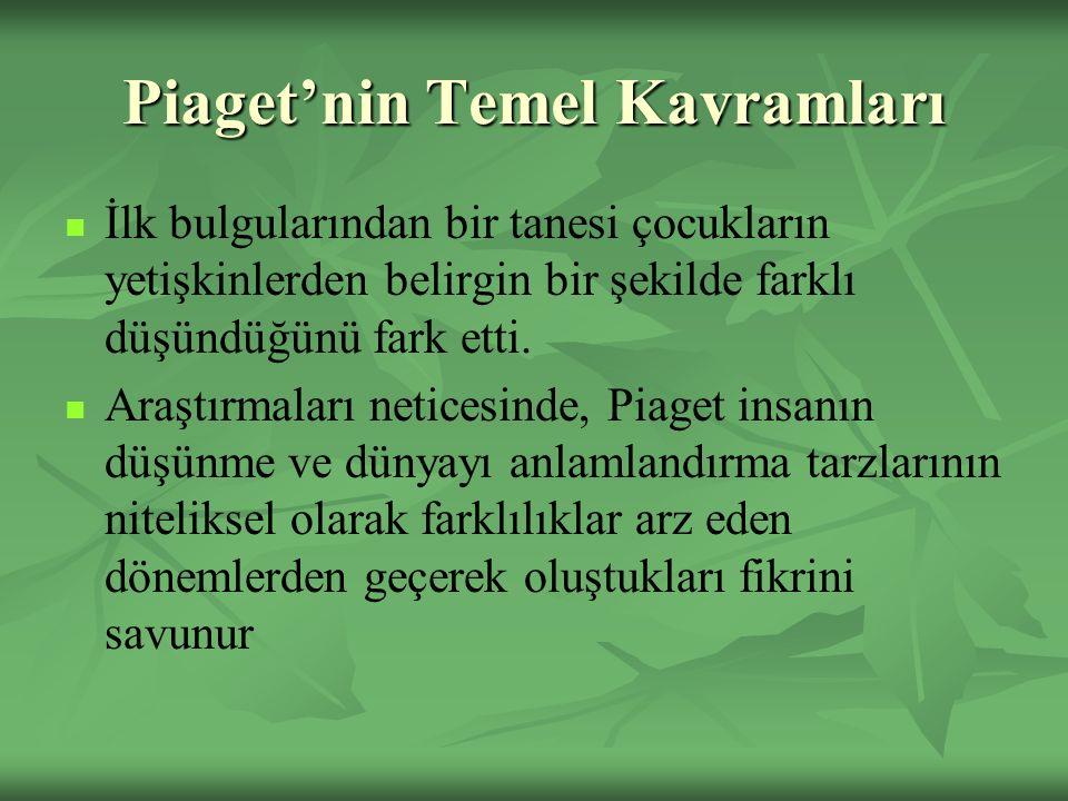 Piaget'nin Temel Kavramları